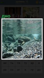 морское дно усыпано камнями и галькой