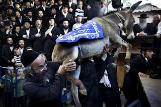 keledai di pundak yahudi