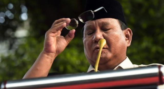 Asisten Pribadi Sebut Prabowo Bisa Bicara dengan Nyamuk dan Semut