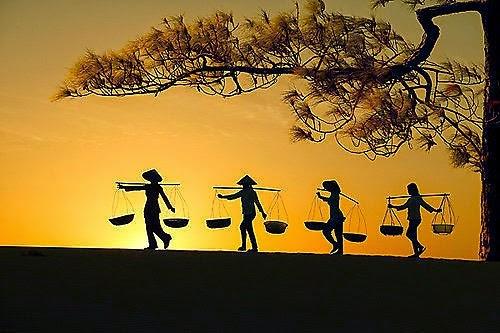 Thiền Osho - Người nông dân và biện chứng