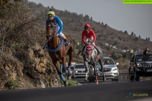 Sodepal abre inscripciones para las carreras de caballos de La Palma Ecuestre en Los Llanos de Aridane