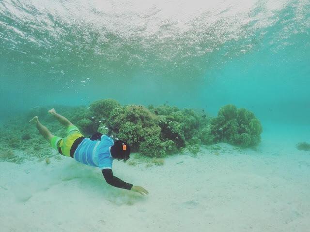 foto snorkeling di pulau maratua
