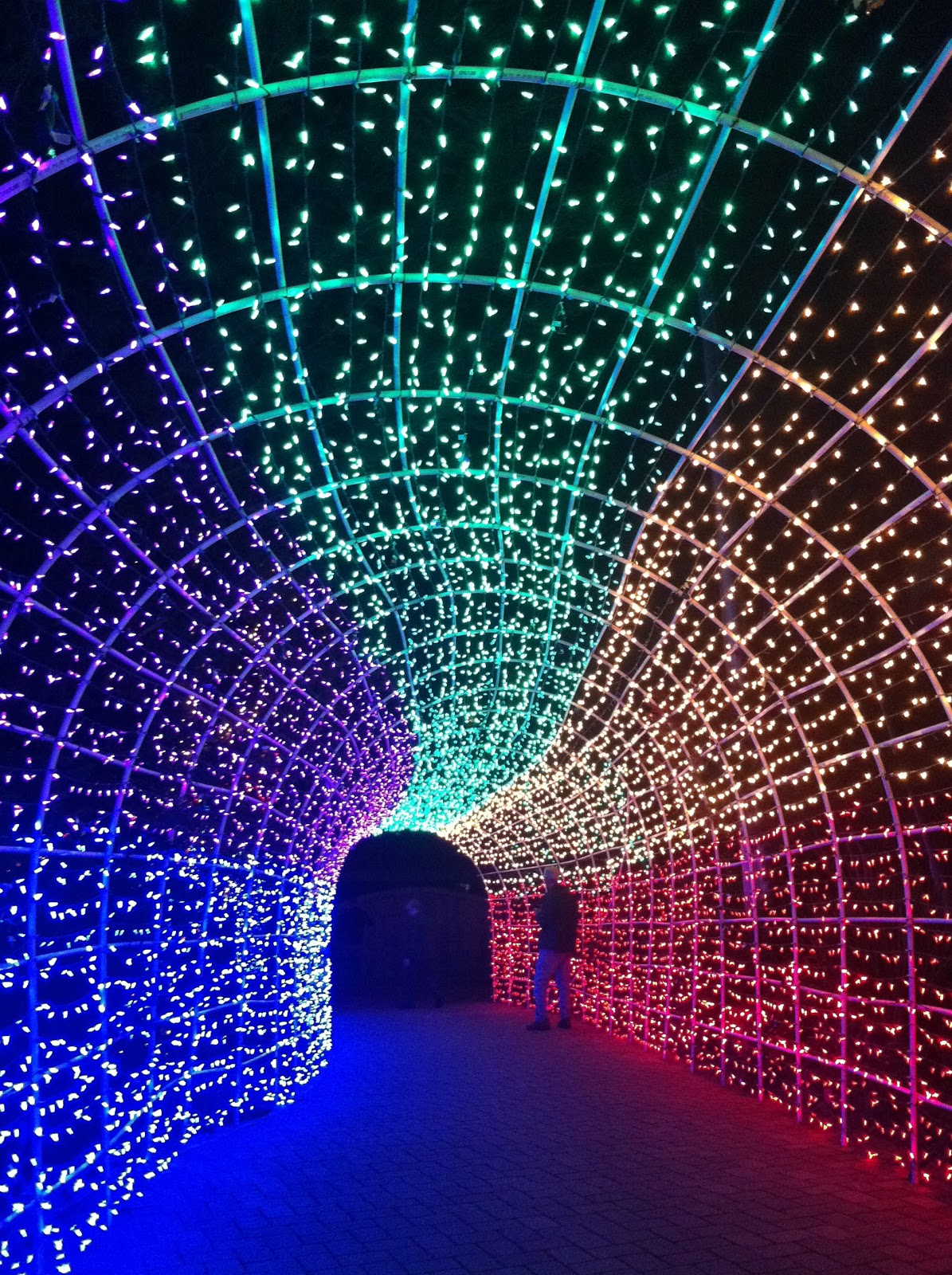 217miles Christmas Lights Up Cambria