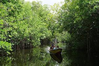Black River, Jamaica.