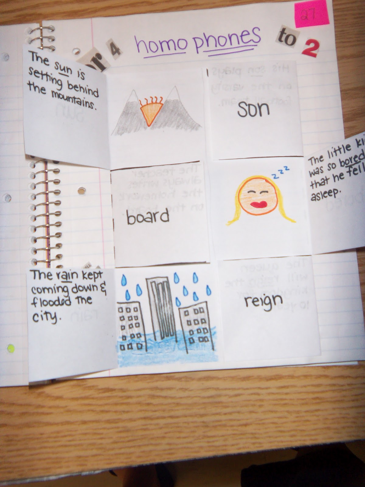 Homophone Worksheet Pinterest