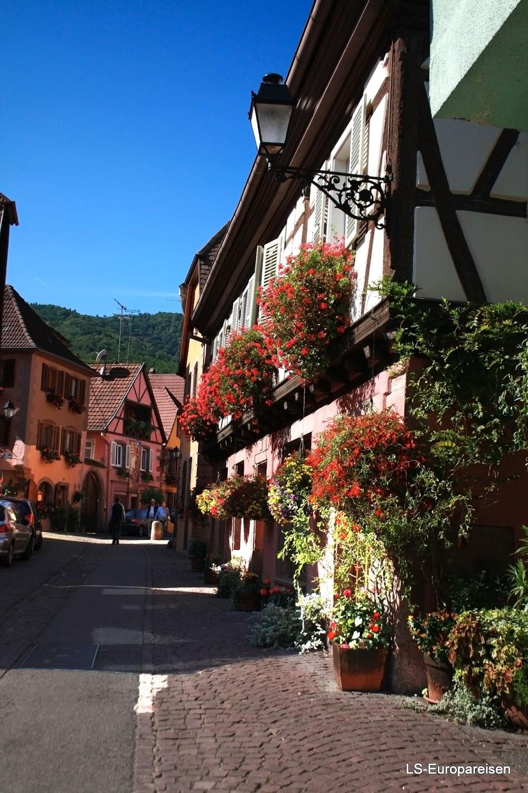 дорога вин Эльзаса, куда поехать, что посмотреть, Рибовилле, Эльзас, Франция, аисты, вино