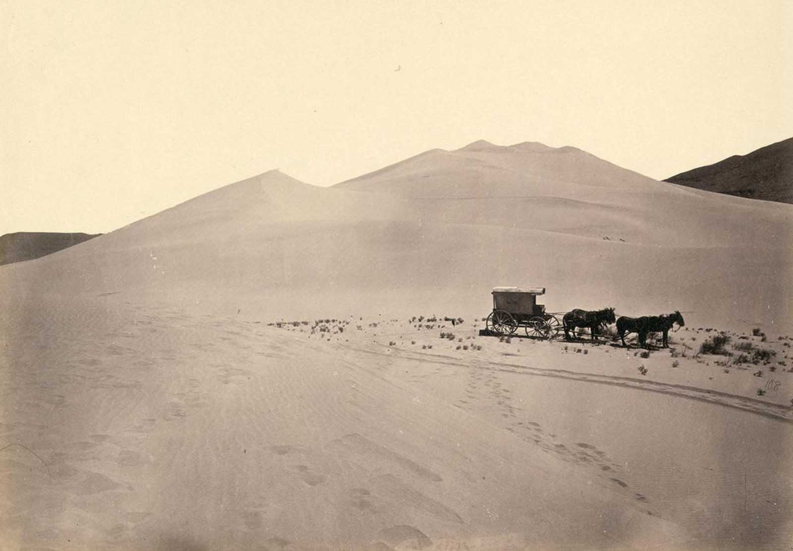 Timothy O'Sullivan's darkroom wagon, pulled by four mules, entered the frame at the right side of the photograph, reached the center of the image, and turned around, heading back out of the frame. Footprints lead from the wagon toward the camera, revealing the photographer's path. Photo taken in 1867, in the Carson Sink, part of Nevada's Carson Desert.