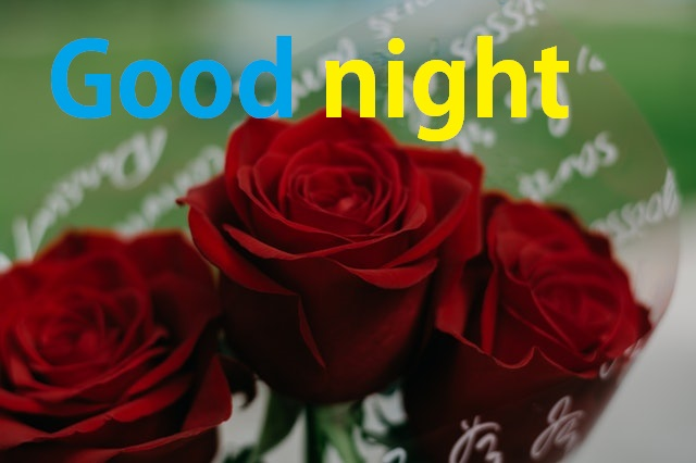 Good Night Image With Rose