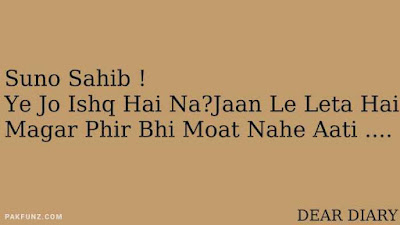 dear diary urdu poetry, love quotes, thoughts and silent words 1