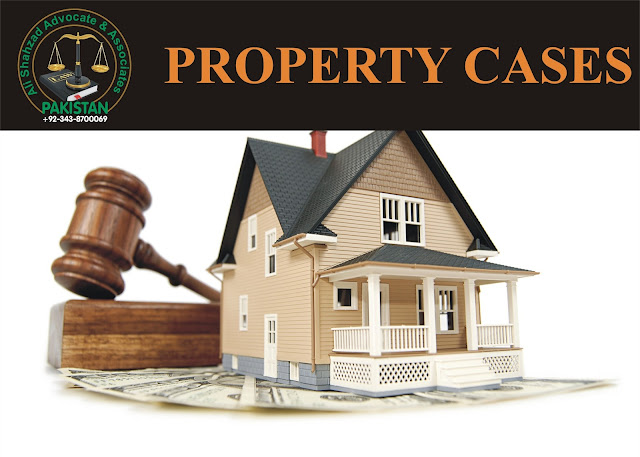 Property cases lawyer