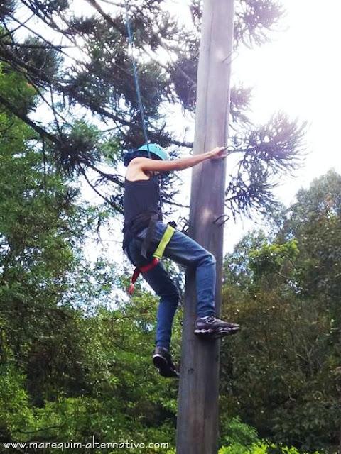 Arborismo em Curitiba