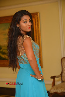 Actress Bhanu Sri Pictures in Blue Long Dress at Apartment Movie Audio Launch  0027.JPG