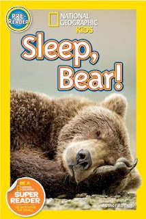 bookcover of National Geographic's SLEEP BEAR