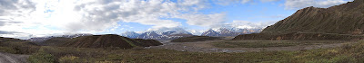Denali national park 2