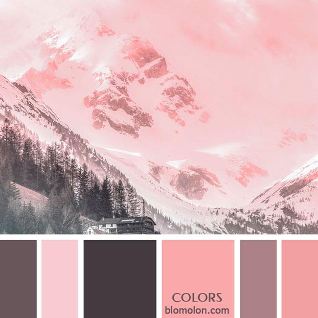 variedad_en_color_paletas_de_colores_82