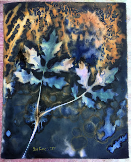 Wet cyanotype, Sue Reno, Image 47