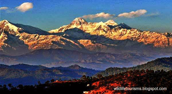 Binsar-wildlife-sanctuary-uttarakhand