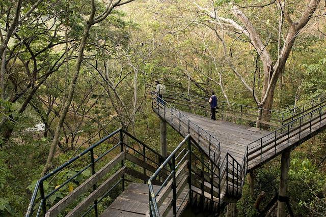 Thenmala Eco Tourism Park