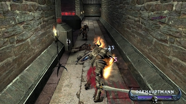 Enclave PC Game Free Download Photo