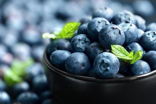 Manfaat Blueberry Untuk Diet Yang Sehat Dan Aman 9bc3f1e107