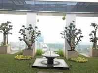 Cara Pembuatan dan Fungsi Taman Atap (Roof Garden)