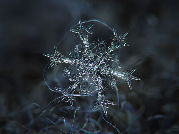 15+ Pics That Show Photography Is The Biggest Lie Ever - Close-ups Of Snowflakes