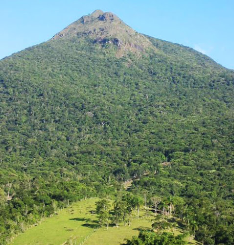 Morro Cambirela