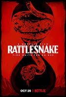 Rattlesnake (2019) Dual Audio [Hindi-DD5.1] 720p HDRip ESubs Download