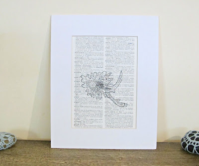 dictionary page art print science microbiology biology amoeba scientist domum vindemia