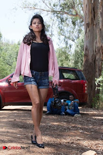 Disha Pandey Latest Exclusive Picture Shoot Gallery