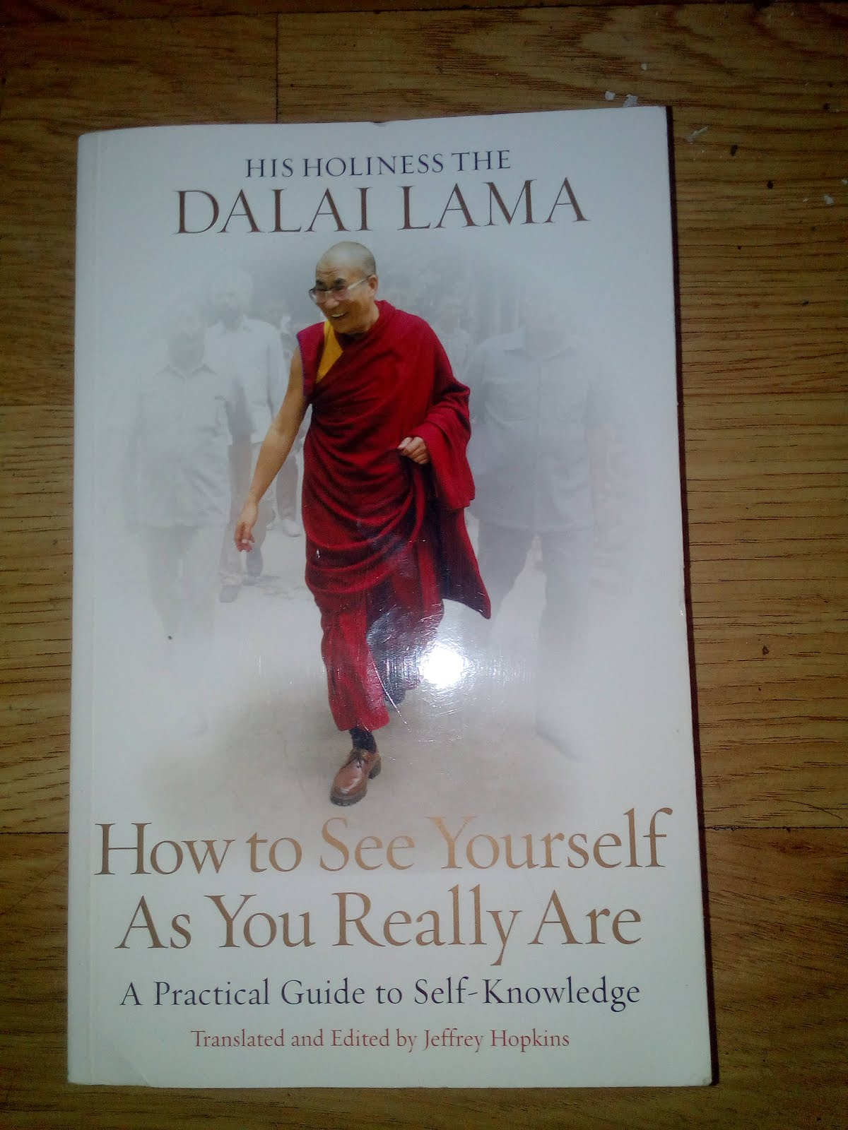 &#39;How to See Yurself As You Really Are&#39; by<br>His Holiness the Dalai Lama.