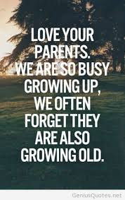 Cute And Lovely Quotes For Parents:  love your parents.