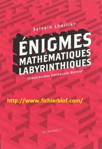 Enigmes mathématiques labyrinthiques : Sylvain Lhullier 2010