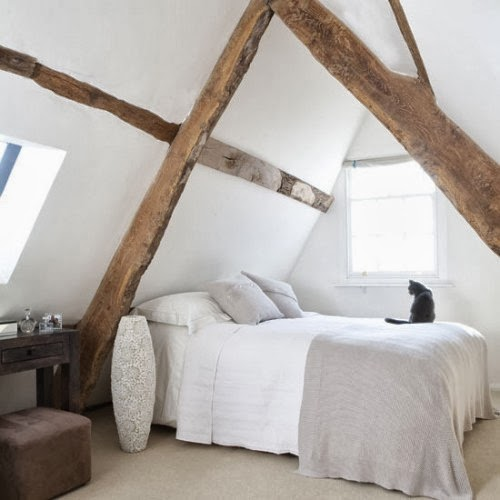 The Sparklit Exposed Beams Shui Or Not Too Shui