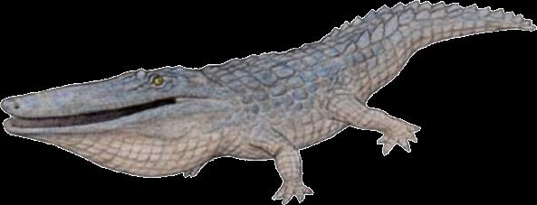hewan purba leluhur buaya - Stomatosuchus