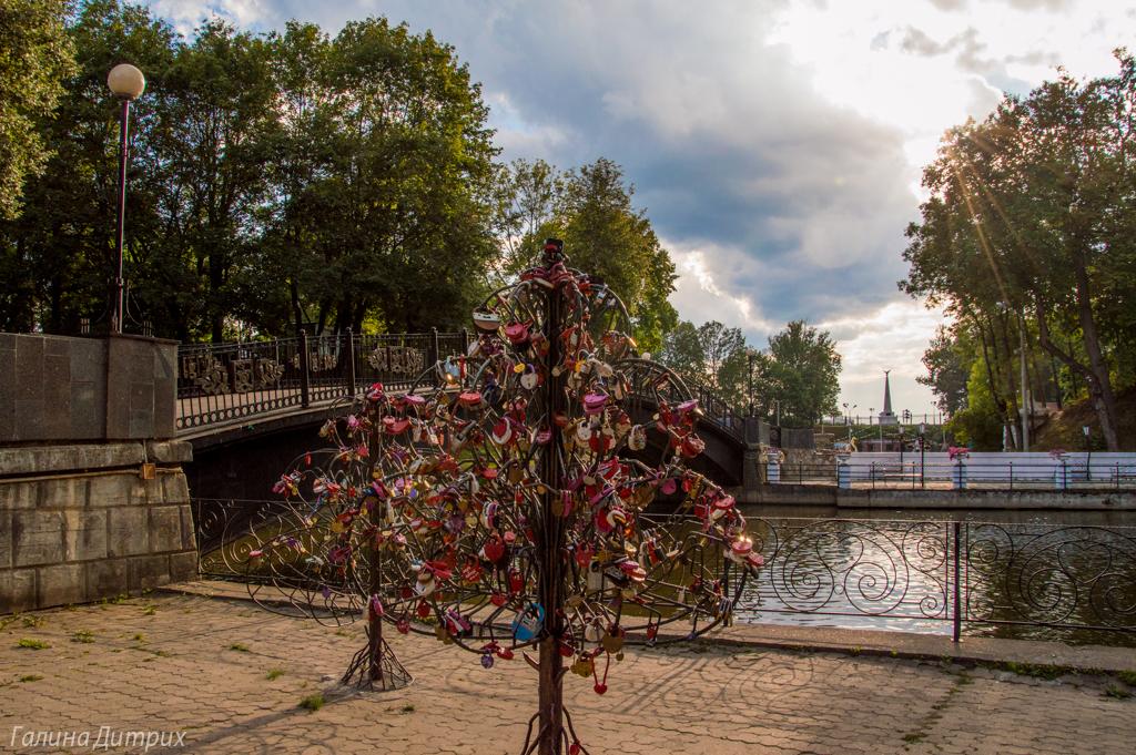 Свадебное дерево в Смоленском парке