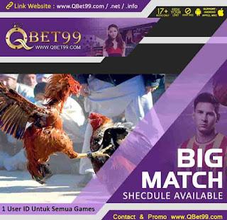 Cara Main Sabung Ayam Online QBet99