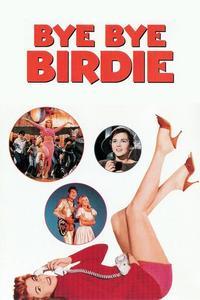Watch Bye Bye Birdie Online Free in HD