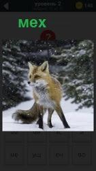 800 слов лиса в зимнее время в качестве меха 2 уровень