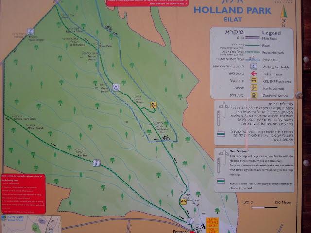 holland park eilat