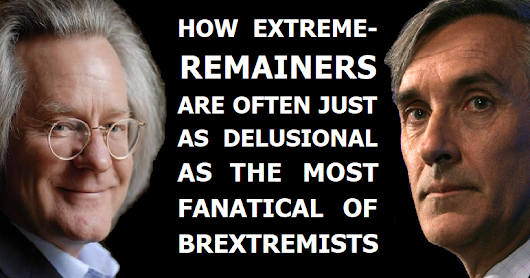 Extreme-Remainers are often just as prone to delusion as the hard-right Brextremist mob