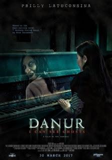 Sinopsis Film DANUR (2017)