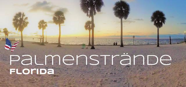 Palmenstrände Florida's, Florida USA