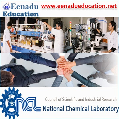 National Chemical Laboratory: Project Fellow; Research Associate (RA)