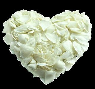 [Resim: Png-Kalp-Resimleri-Heart-N%2B%252871%2529.png]