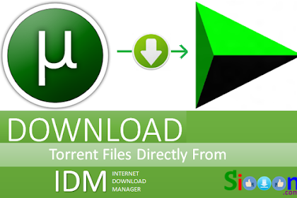 How to easily change the File Torrent to Direct Link