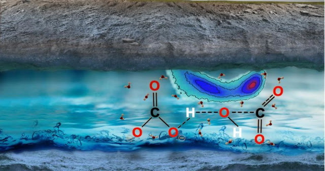 Scientists probe underground depths of Earth's carbon cycle