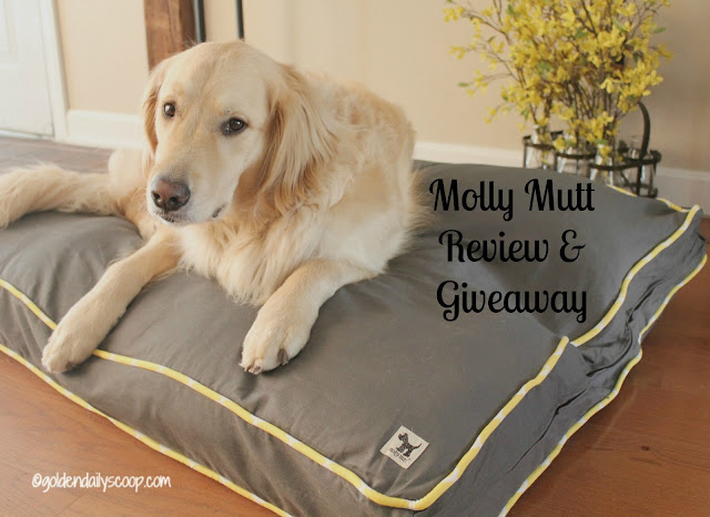 molly mutt duvet cover for dog beds review and giveaway