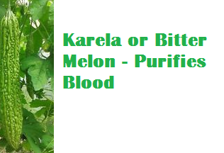 Health Benefits Of Karela or Bitter Melon - Purifies Blood