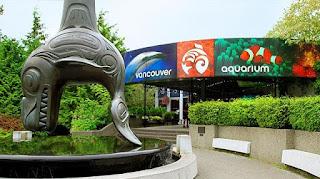 Places Vancouver Aquarium